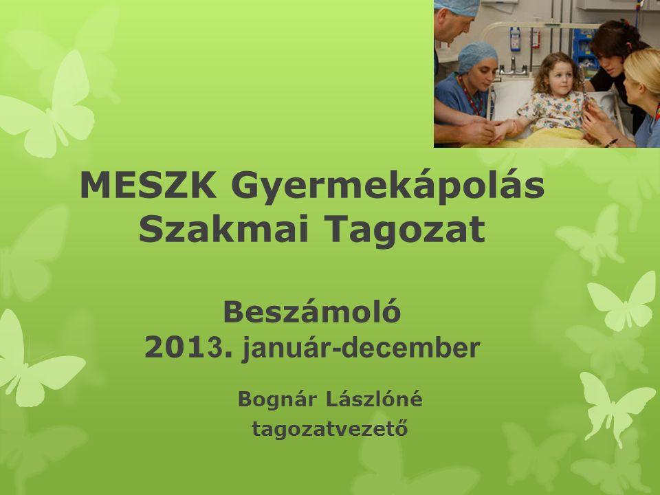 MESZK Gyermekápolás Szakmai Tagozat Beszámoló 201 3. január-december Bognár Lászlóné tagozatvezető