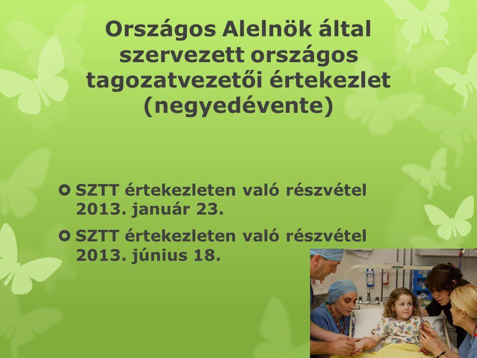 Egyebek  Tagozati költségvetés és munkaterv elkészítése a 2013.