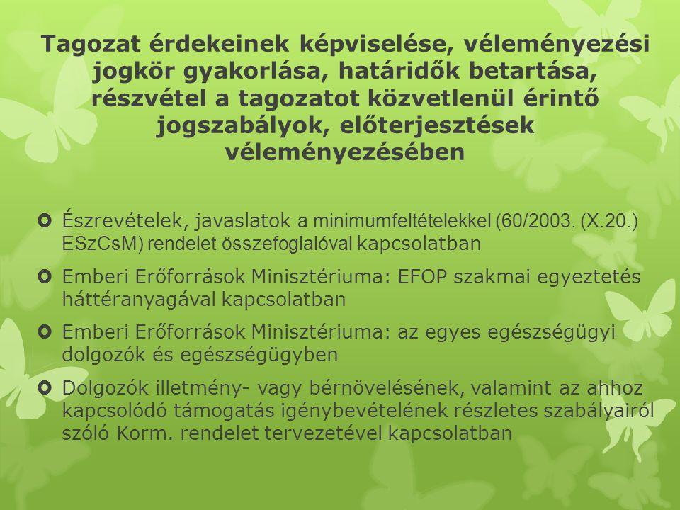 Tagozat érdekeinek képviselése, véleményezési jogkör gyakorlása, határidők betartása, részvétel a tagozatot közvetlenül érintő jogszabályok, előterjesztések véleményezésében  Emberi Erőforrások Minisztériuma: EFOP szakmai egyeztetés háttéranyagával kapcsolatban (2013.08.25.)  Észrevételek, átdolgozásra vonatkozó javaslatok az egészségügyi szakdolgozók kötelező szakmacsoportos továbbképzéssel kapcsolatban (2013.10.20.)  Észrevételek, javaslatok az egyes egészségügyi és egészségbiztosítási tárgyú törvények módosításával kapcsolatban (2013.10.20.)  Emberi Erőforrások Minisztériuma: EFOP 2014- 2020 szakmai egyeztetés háttéranyagával kapcsolatban (2013.11.11.)