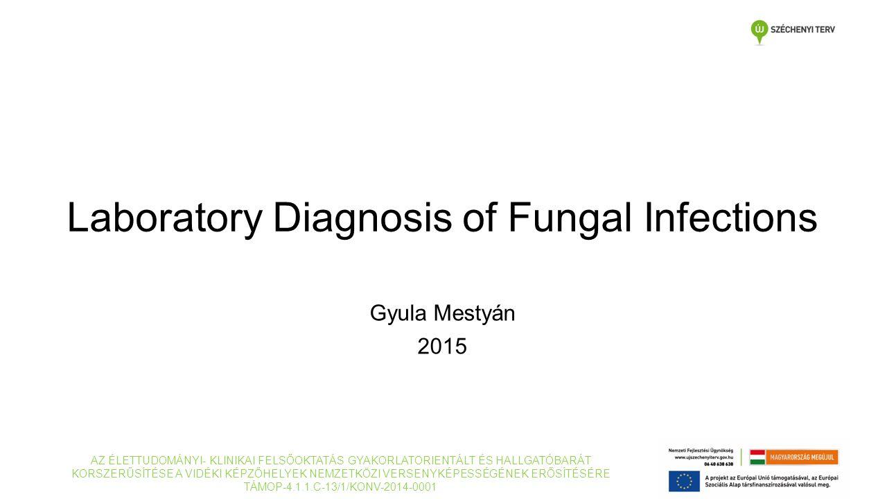 Laboratory Diagnosis of Fungal Infections Gyula Mestyán 2015 AZ ÉLETTUDOMÁNYI- KLINIKAI FELSŐOKTATÁS GYAKORLATORIENTÁLT ÉS HALLGATÓBARÁT KORSZERŰSÍTÉSE A VIDÉKI KÉPZŐHELYEK NEMZETKÖZI VERSENYKÉPESSÉGÉNEK ERŐSÍTÉSÉRE TÁMOP-4.1.1.C-13/1/KONV-2014-0001