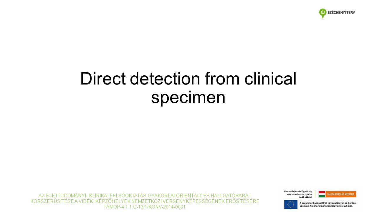 Direct detection from clinical specimen AZ ÉLETTUDOMÁNYI- KLINIKAI FELSŐOKTATÁS GYAKORLATORIENTÁLT ÉS HALLGATÓBARÁT KORSZERŰSÍTÉSE A VIDÉKI KÉPZŐHELYEK NEMZETKÖZI VERSENYKÉPESSÉGÉNEK ERŐSÍTÉSÉRE TÁMOP-4.1.1.C-13/1/KONV-2014-0001