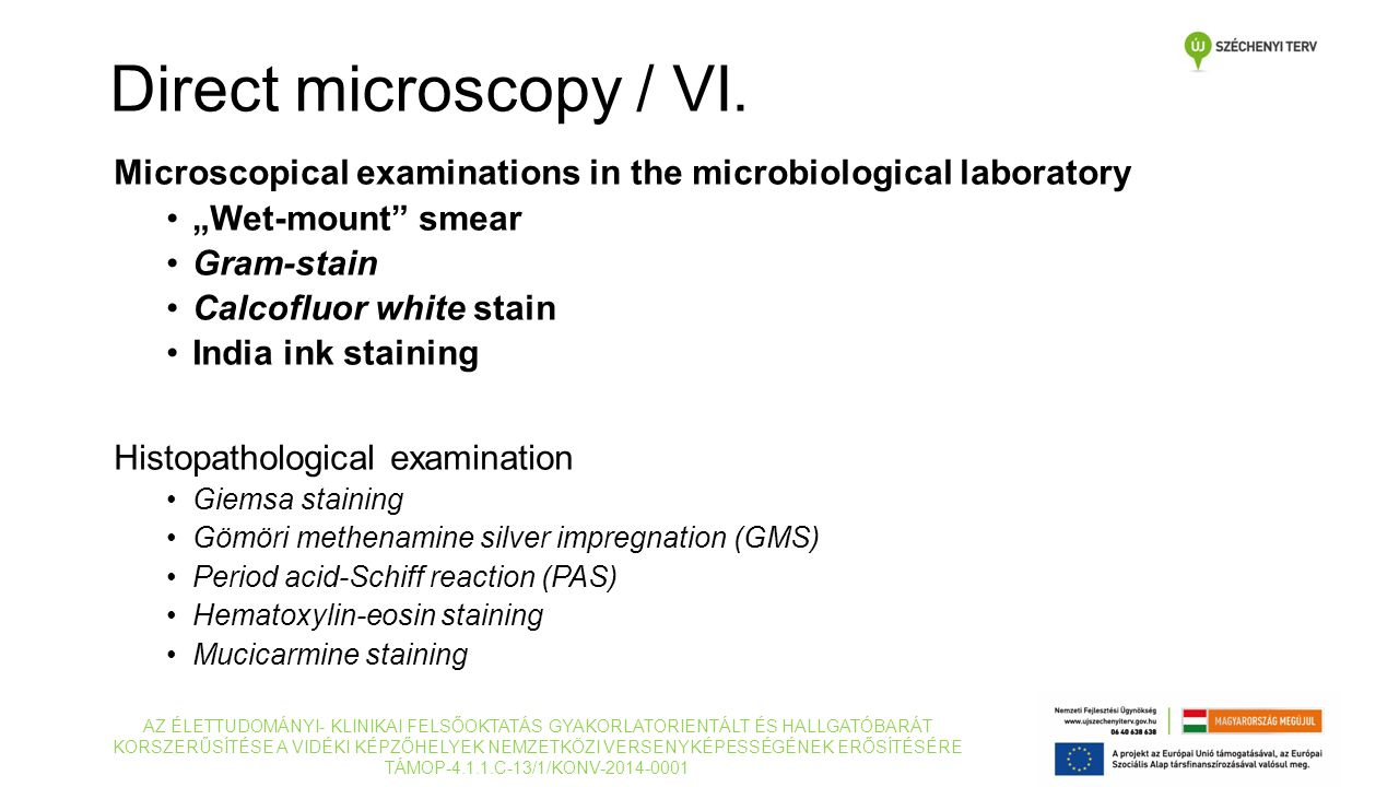 "Microscopical examinations in the microbiological laboratory ""Wet-mount"" smear Gram-stain Calcofluor white stain India ink staining Histopathological"