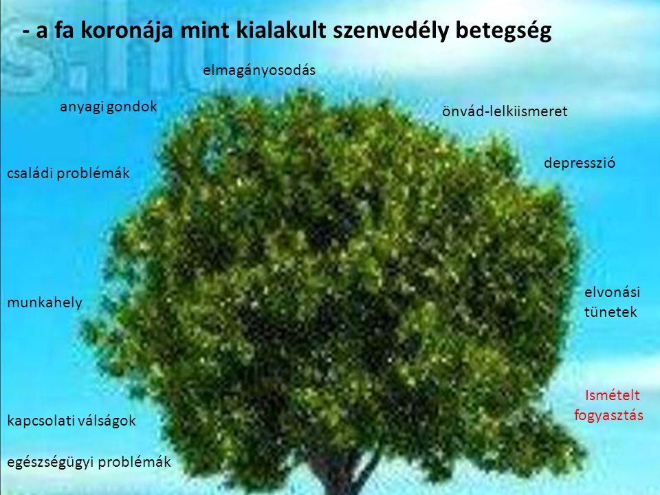 - a fa koronája mint kialakult szenvedély betegség egészségügyi problémák kapcsolati válságok munkahely családi problémák anyagi gondok elmagányosodás önvád-lelkiismeret depresszió elvonási tünetek Ismételt fogyasztás