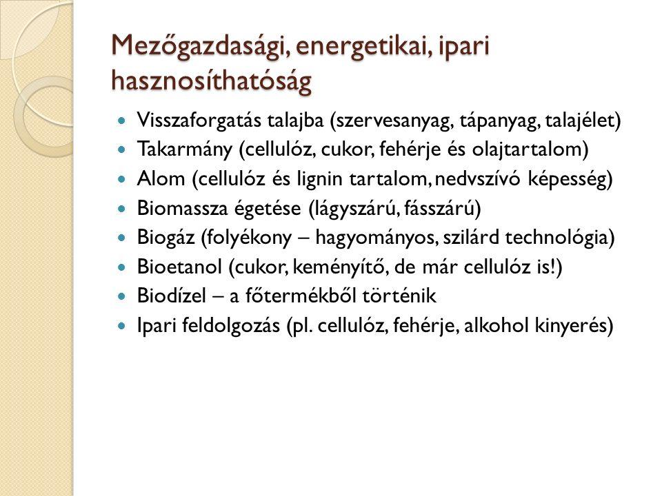 Mezőgazdasági, energetikai, ipari hasznosíthatóság Visszaforgatás talajba (szervesanyag, tápanyag, talajélet) Takarmány (cellulóz, cukor, fehérje és o