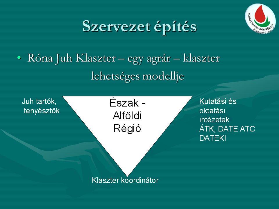 Szervezet építés Róna Juh Klaszter – egy agrár – klaszterRóna Juh Klaszter – egy agrár – klaszter lehetséges modellje lehetséges modellje