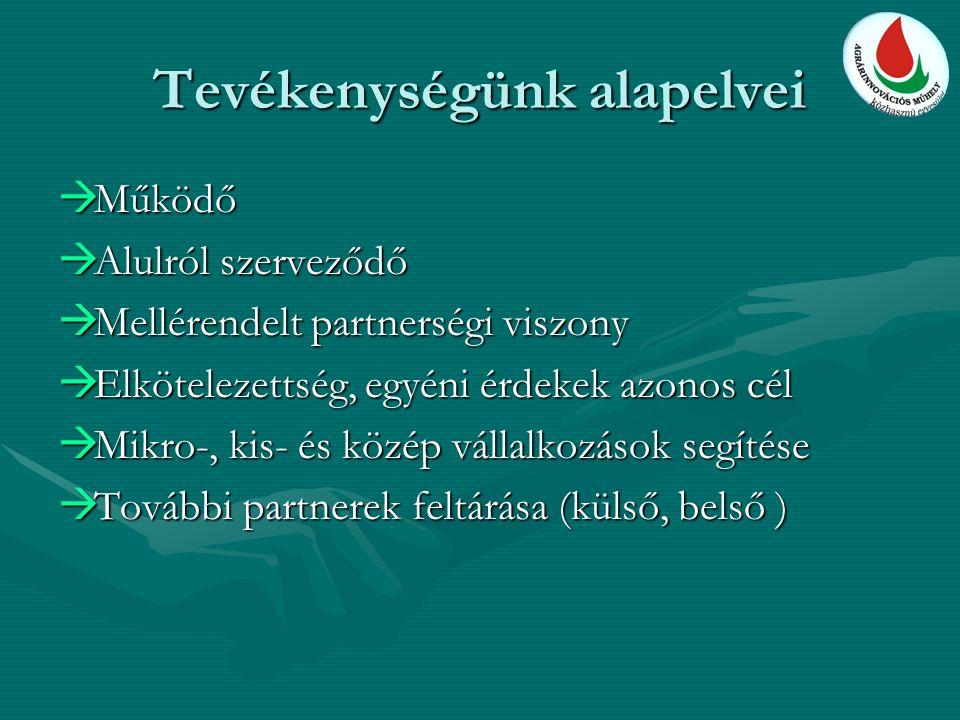 Tevékenységünk alapelvei  Működő  Alulról szerveződő  Mellérendelt partnerségi viszony  Elkötelezettség, egyéni érdekek azonos cél  Mikro-, kis-