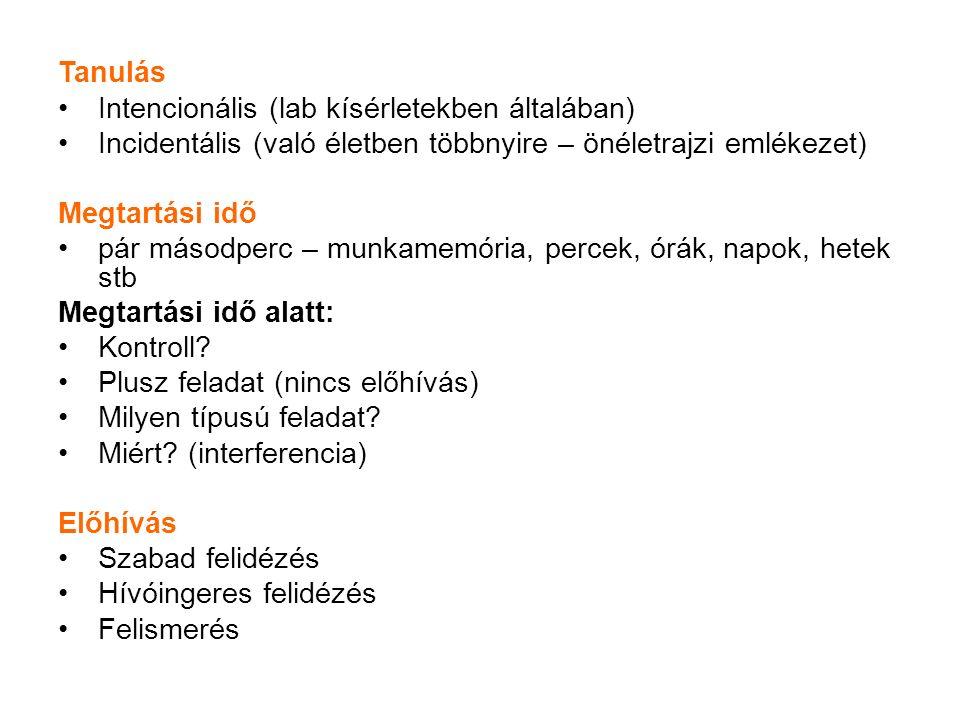 KEZDETI TANULÁS (pl.40 szuahéli-magyar szópár, pl.