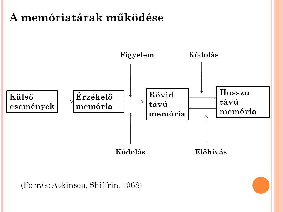 A memóriatárak működése Érzékelő memória Külső események Rövid távú memória Hosszú távú memória FigyelemKódolás Előhívás (Forrás: Atkinson, Shiffrin, 1968)