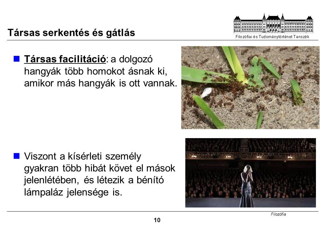 Filozófia 10 Társas serkentés és gátlás Társas facilitáció: a dolgozó hangyák több homokot ásnak ki, amikor más hangyák is ott vannak.