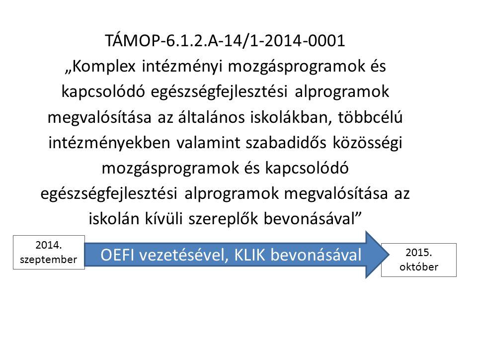 """TÁMOP-6.1.2.A-14/1-2014-0001 """"Komplex intézményi mozgásprogramok és kapcsolódó egészségfejlesztési alprogramok megvalósítása az általános iskolákban, többcélú intézményekben valamint szabadidős közösségi mozgásprogramok és kapcsolódó egészségfejlesztési alprogramok megvalósítása az iskolán kívüli szereplők bevonásával 2014."""