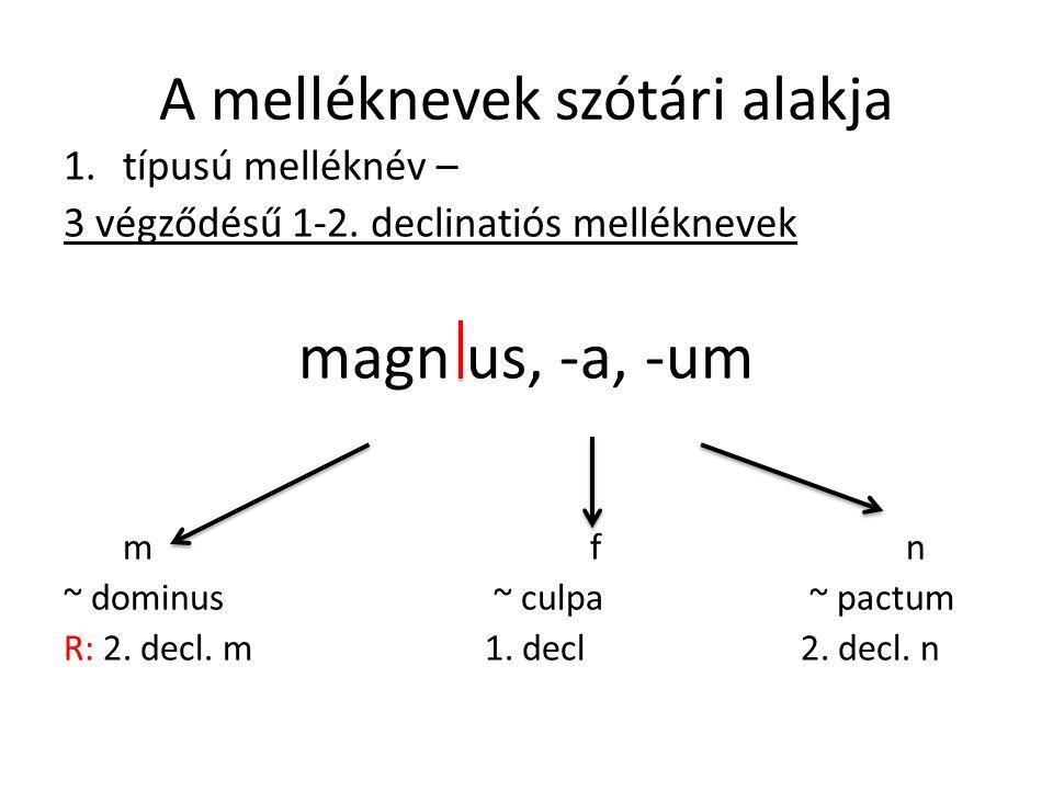 A melléknevek szótári alakja 1.típusú melléknév – 3 végződésű 1-2.