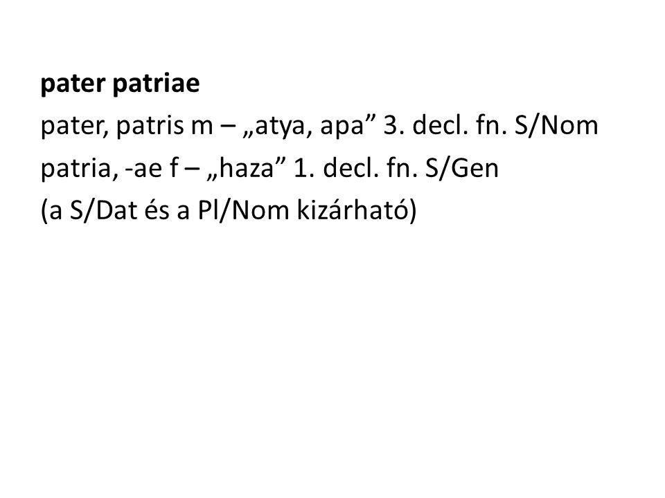 """pater patriae pater, patris m – """"atya, apa 3. decl."""