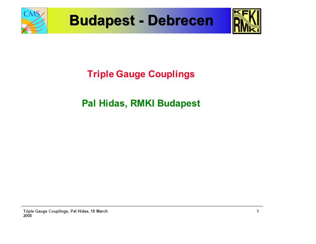 Triple Gauge Couplings, Pal Hidas, 18 March 2008 1 Budapest - Debrecen Budapest - Debrecen Triple Gauge Couplings Pal Hidas, RMKI Budapest