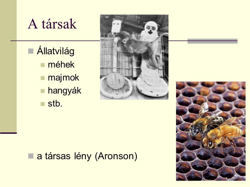 A társak Állatvilág méhek majmok hangyák stb. a társas lény (Aronson)