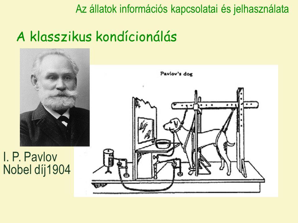 A klasszikus kondícionálás Az állatok információs kapcsolatai és jelhasználata I.
