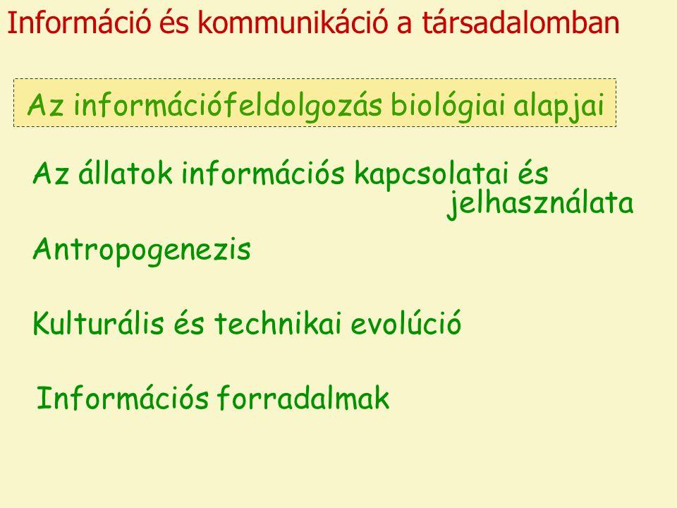 Információ és kommunikáció a társadalomban Az információfeldolgozás biológiai alapjai Az állatok információs kapcsolatai és jelhasználata Antropogenezis Kulturális és technikai evolúció Információs forradalmak