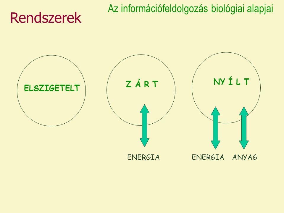 ELSZIGETELT Z Á R T NY Í L T ENERGIA ANYAG Rendszerek Az információfeldolgozás biológiai alapjai