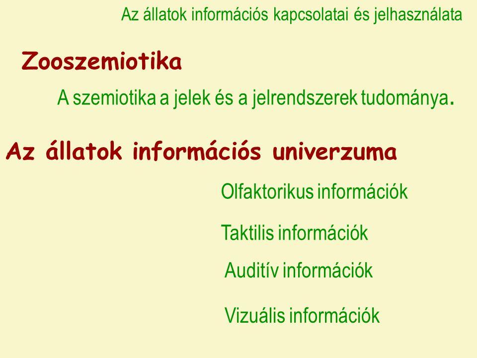 Az állatok információs kapcsolatai és jelhasználata Zooszemiotika A szemiotika a jelek és a jelrendszerek tudománya.