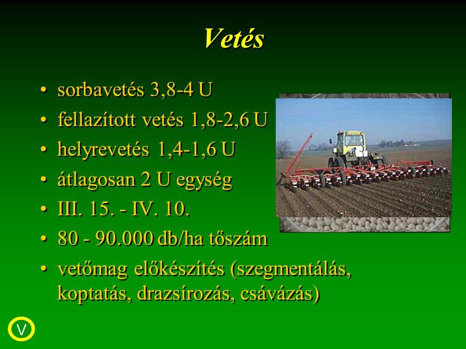 Vetés sorbavetés 3,8-4 U fellazított vetés 1,8-2,6 U helyrevetés 1,4-1,6 U átlagosan 2 U egység III.