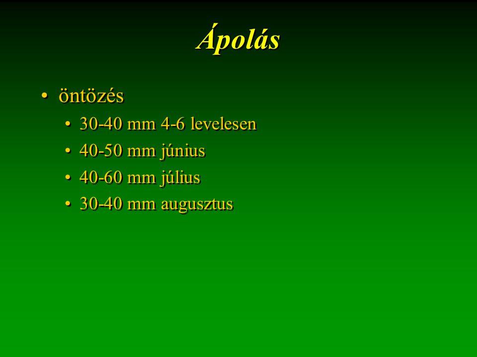 Ápolás öntözés 30-40 mm 4-6 levelesen 40-50 mm június 40-60 mm július 30-40 mm augusztus öntözés 30-40 mm 4-6 levelesen 40-50 mm június 40-60 mm júliu