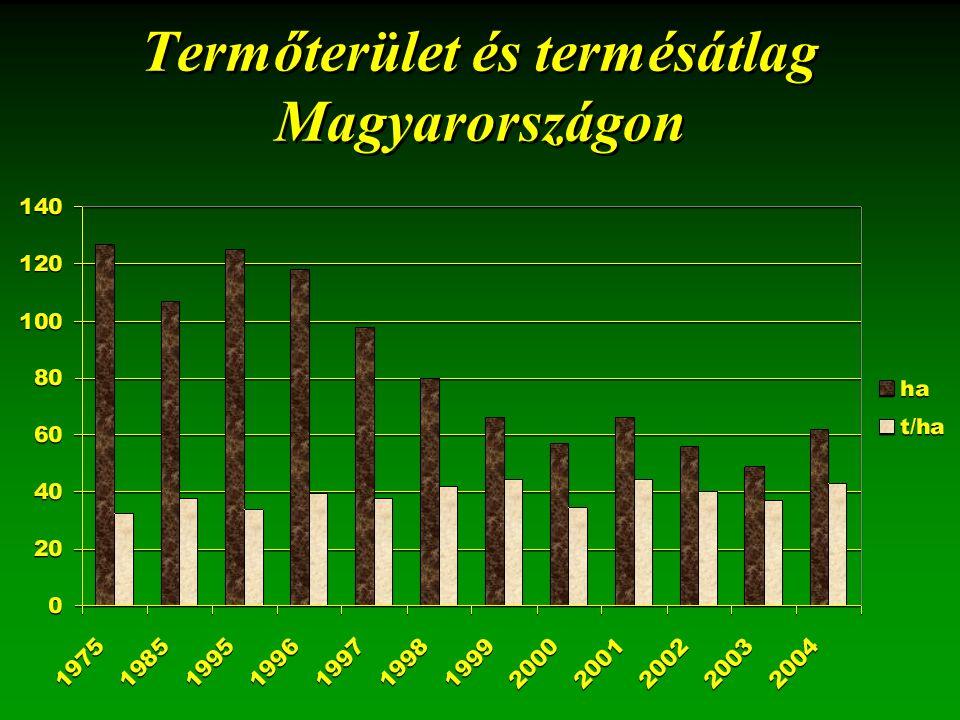 Termőterület és termésátlag Magyarországon