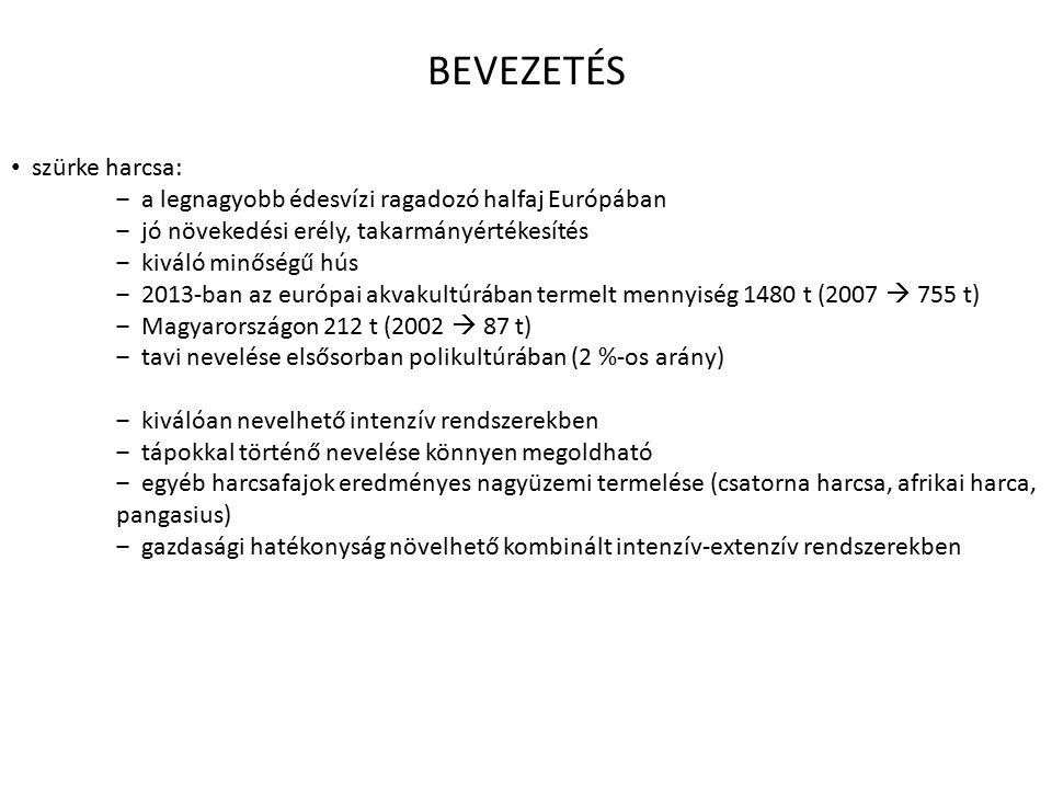 BEVEZETÉS szürke harcsa: ‒ a legnagyobb édesvízi ragadozó halfaj Európában ‒ jó növekedési erély, takarmányértékesítés ‒ kiváló minőségű hús ‒ 2013-ban az európai akvakultúrában termelt mennyiség 1480 t (2007  755 t) ‒ Magyarországon 212 t (2002  87 t) ‒ tavi nevelése elsősorban polikultúrában (2 %-os arány) ‒ kiválóan nevelhető intenzív rendszerekben ‒ tápokkal történő nevelése könnyen megoldható ‒ egyéb harcsafajok eredményes nagyüzemi termelése (csatorna harcsa, afrikai harca, pangasius) ‒ gazdasági hatékonyság növelhető kombinált intenzív-extenzív rendszerekben