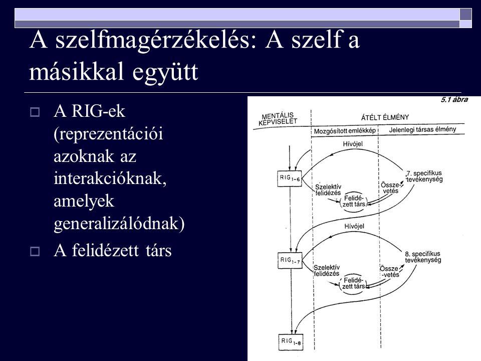 A szelfmagérzékelés: A szelf a másikkal együtt  A RIG-ek (reprezentációi azoknak az interakcióknak, amelyek generalizálódnak)  A felidézett társ