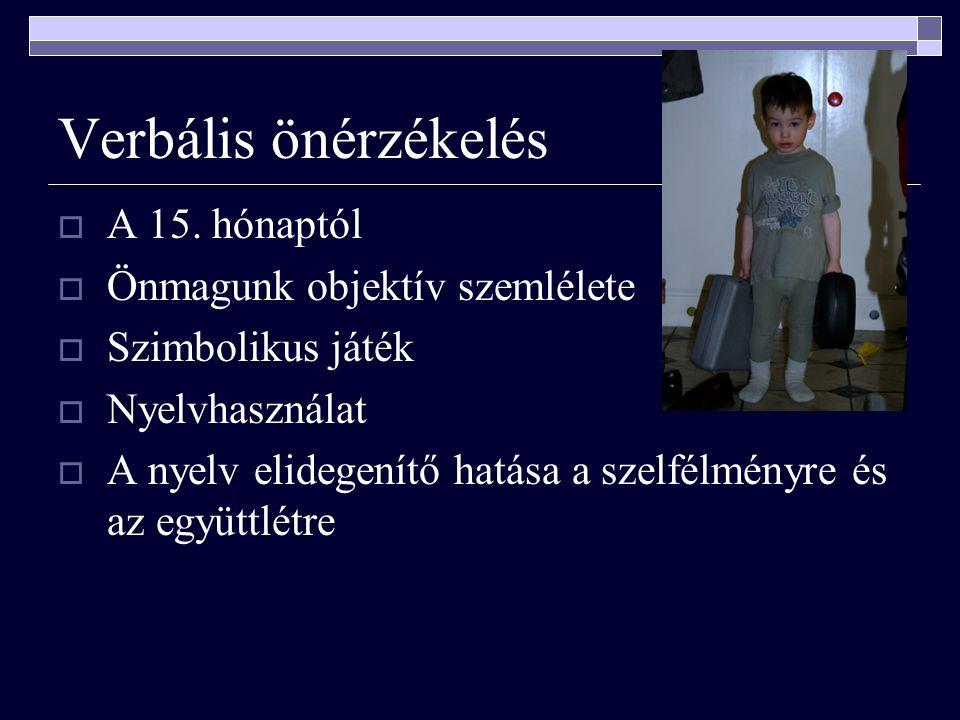 Verbális önérzékelés  A 15.