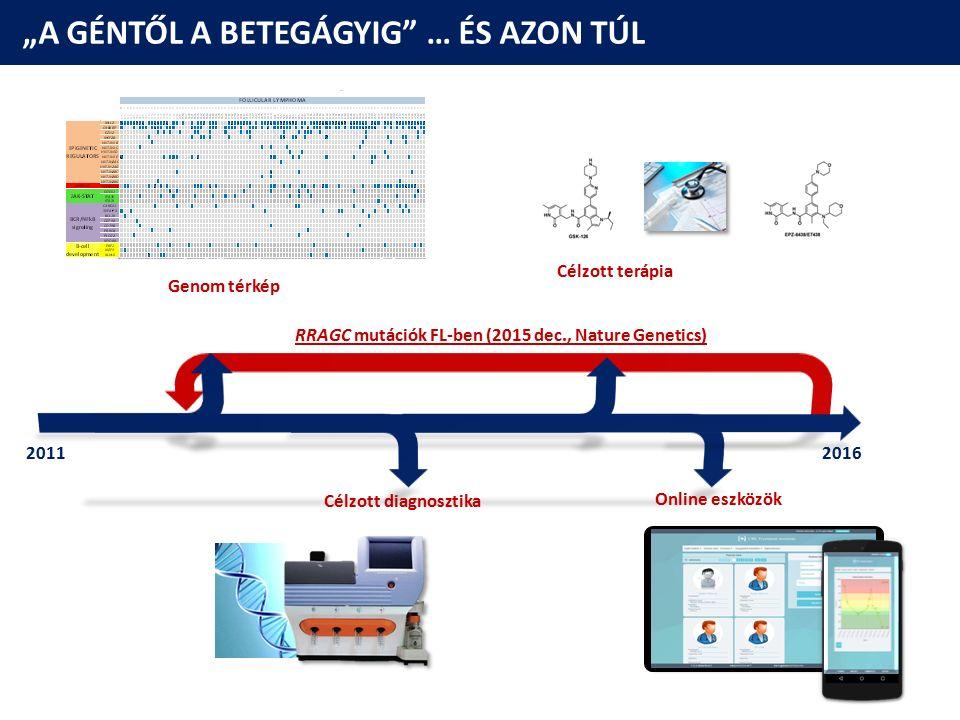 """""""A GÉNTŐL A BETEGÁGYIG"""" … ÉS AZON TÚL Célzott terápia Genom térkép Célzott diagnosztika Online eszközök 20112016 RRAGC mutációk FL-ben (2015 dec., Nat"""