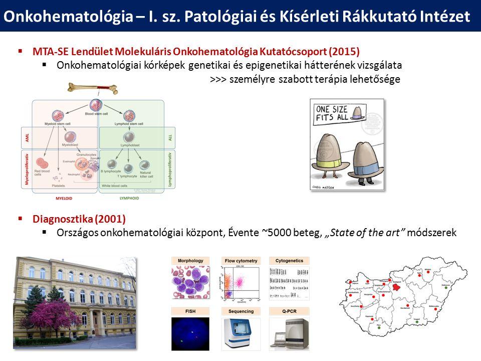 """""""A géntől a betegágyig … és azon túl … Célzott terápia Genom térkép Célzott diagnosztika Online eszközök 20102016"""