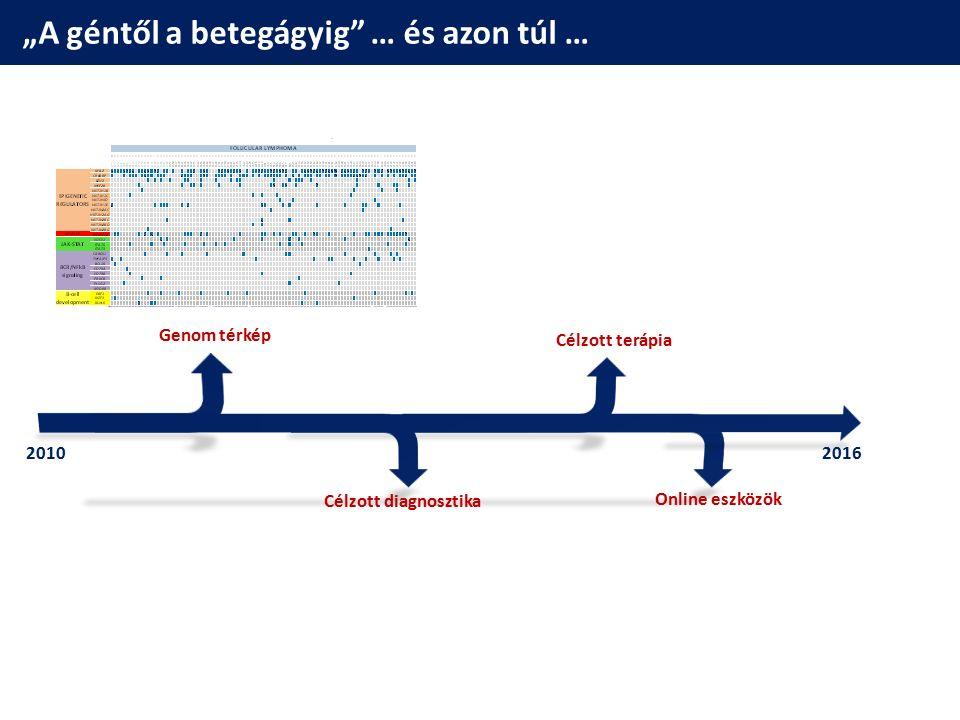 A follicularis lymphoma genom térképe  B-sejtes lymphoma  Rituximab (anti-CD20)  Túlélés: ~10 év, de gyógyíthatatlan  t(14;18) >>> IgH-BCL2 (85%) FL genom megismerése (2011-2014)  Epigenetikai szabályozás prominens szerepe  Célozható eltérések Okosun, Bödör, Nature Genetics 2014