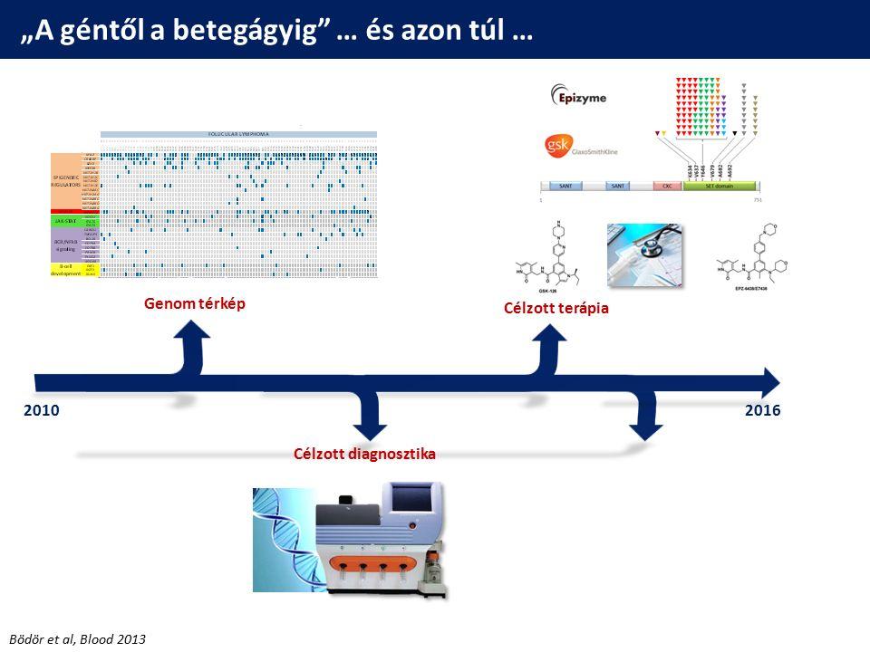Célzott diagnosztika és terápia  Szelektív EZH2 gátlószerek B-sejtes lymphomákban (klinikai tanulmányok) EPZ6438 (Tazemetostat) Bödör et al, Blood 2013 Robak, Blood 2015  Új terápiás lehetőségek a genotípus függvényében – Új generációs szekv.