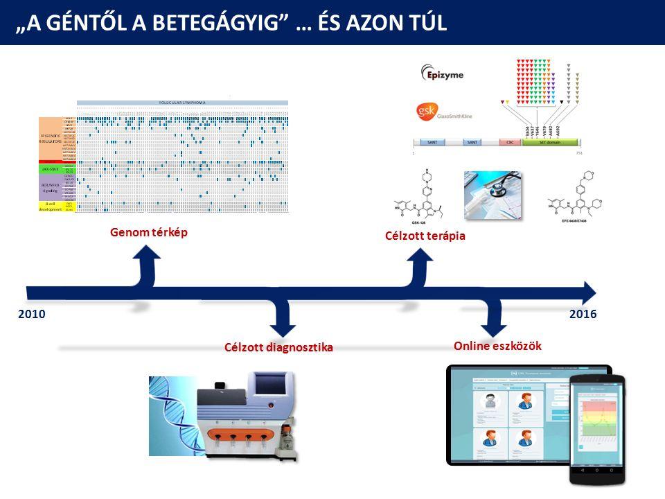 """""""A GÉNTŐL A BETEGÁGYIG"""" … ÉS AZON TÚL Célzott terápia Genom térkép Célzott diagnosztika Online eszközök 20102016"""