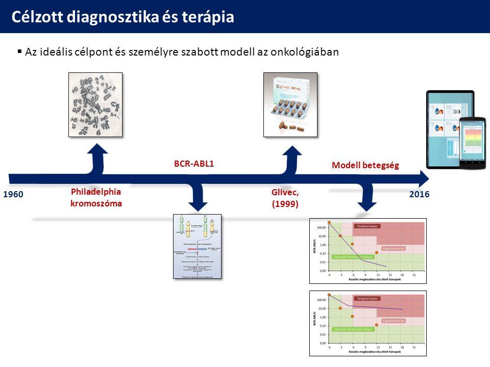 Célzott diagnosztika és terápia  Az ideális célpont és személyre szabott modell az onkológiában 19602016 Philadelphia kromoszóma Modell betegség Gliv