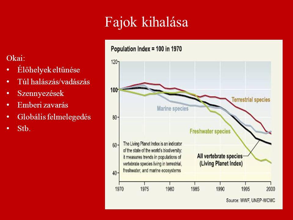 Fajok kihalása Okai: Élőhelyek eltűnése Túl halászás/vadászás Szennyezések Emberi zavarás Globális felmelegedés Stb.