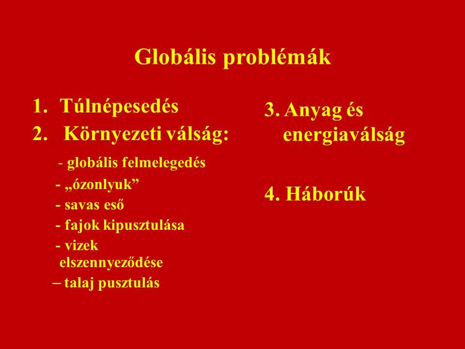"""Globális problémák 1.Túlnépesedés 2. Környezeti válság: - globális felmelegedés - """"ózonlyuk"""" - savas eső - fajok kipusztulása - vizek elszennyeződése"""
