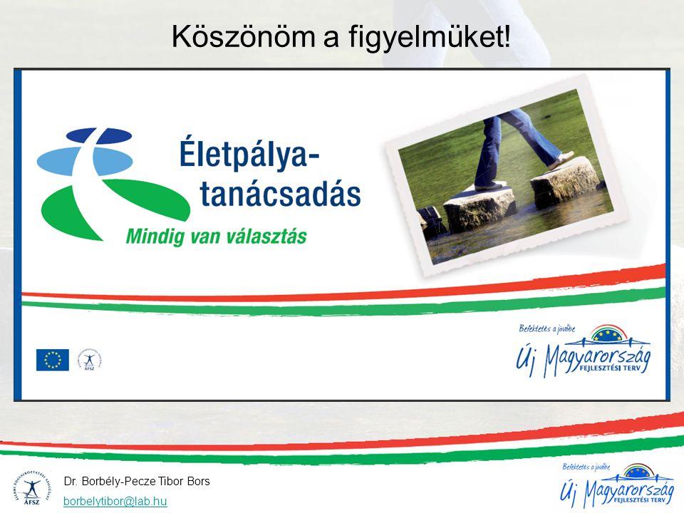 Dr. Borbély-Pecze Tibor Bors borbelytibor@lab.hu Köszönöm a figyelmüket!