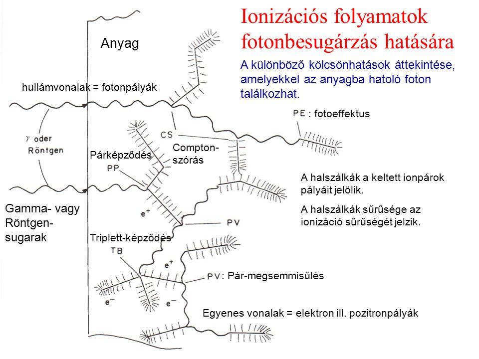Ionizációs folyamatok fotonbesugárzás hatására hullámvonalak = fotonpályák Egyenes vonalak = elektron ill. pozitronpályák : fotoeffektus Compton- szór