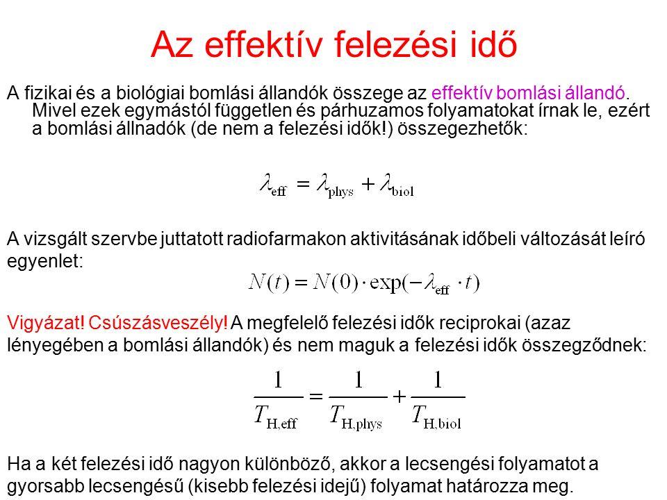 Az effektív felezési idő A fizikai és a biológiai bomlási állandók összege az effektív bomlási állandó. Mivel ezek egymástól független és párhuzamos f