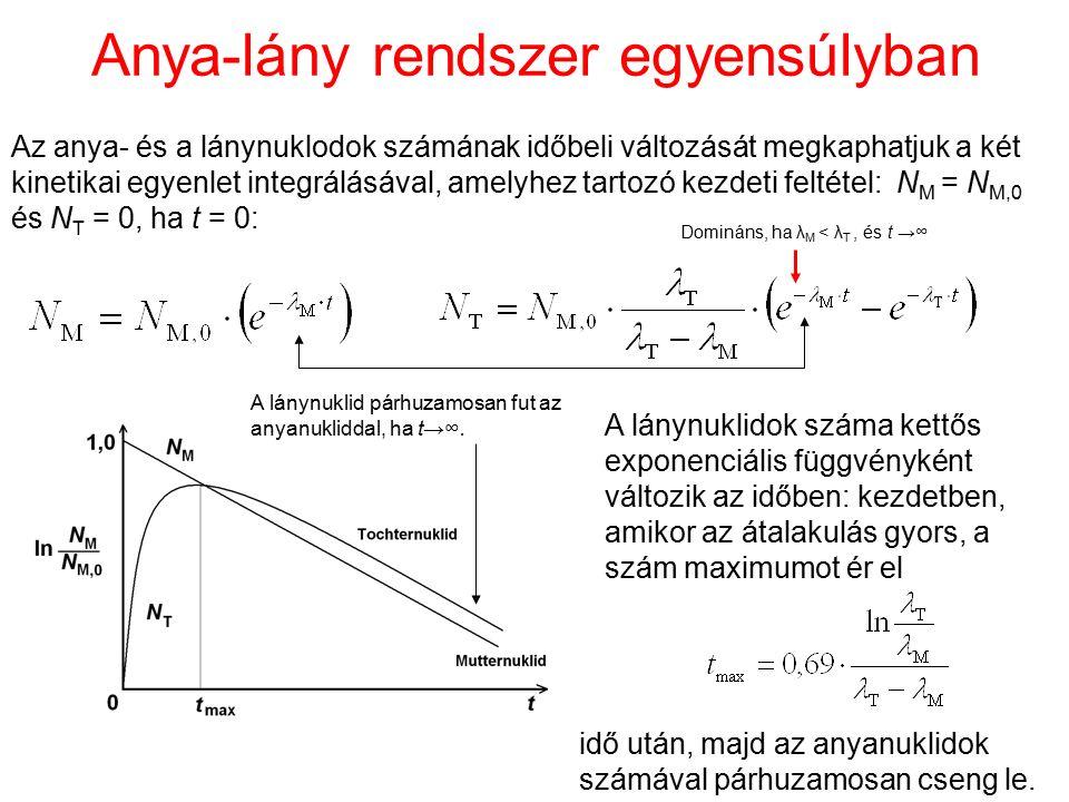 Anya-lány rendszer egyensúlyban Az anya- és a lánynuklodok számának időbeli változását megkaphatjuk a két kinetikai egyenlet integrálásával, amelyhez