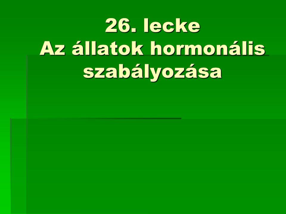 26. lecke Az állatok hormonális szabályozása