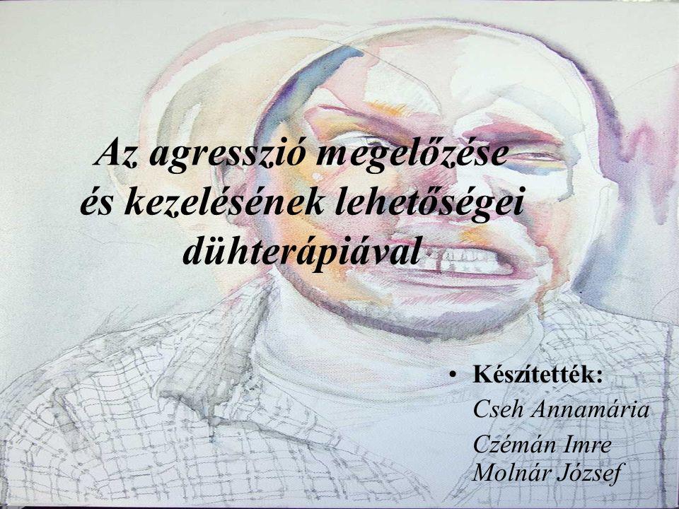 Az agresszió megelőzése és kezelésének lehetőségei dühterápiával Készítették: Cseh Annamária Czémán Imre Molnár József