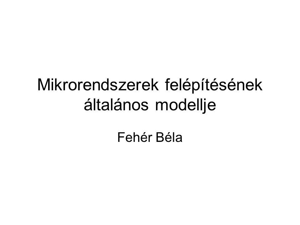 Mikrorendszerek felépítésének általános modellje Fehér Béla