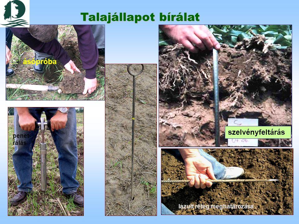 Talajállapot bírálat ásópróba szelvényfeltárás lazult réteg meghatározása penet- rálás