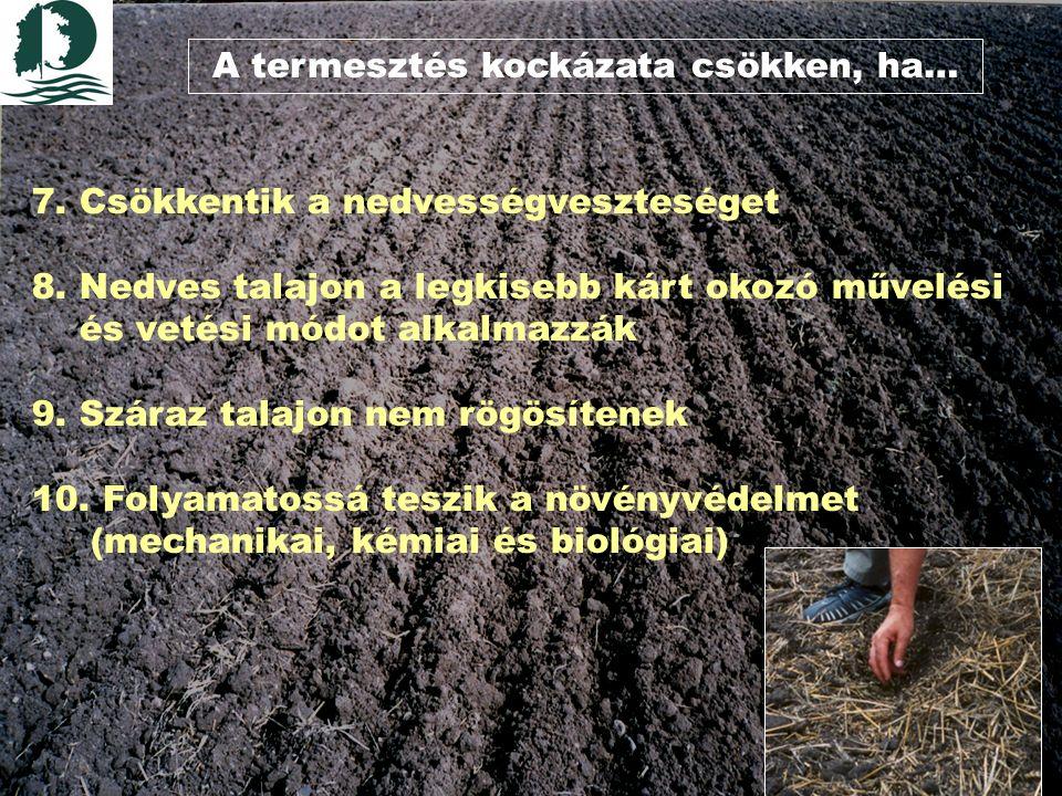 A termesztés kockázata csökken, ha… 7.Csökkentik a nedvességveszteséget 8.