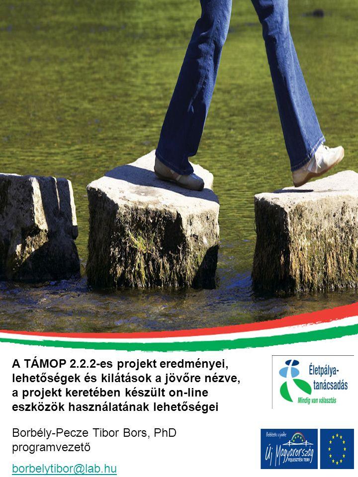 A TÁMOP 2.2.2-es projekt eredményei, lehetőségek és kilátások a jövőre nézve, a projekt keretében készült on-line eszközök használatának lehetőségei B