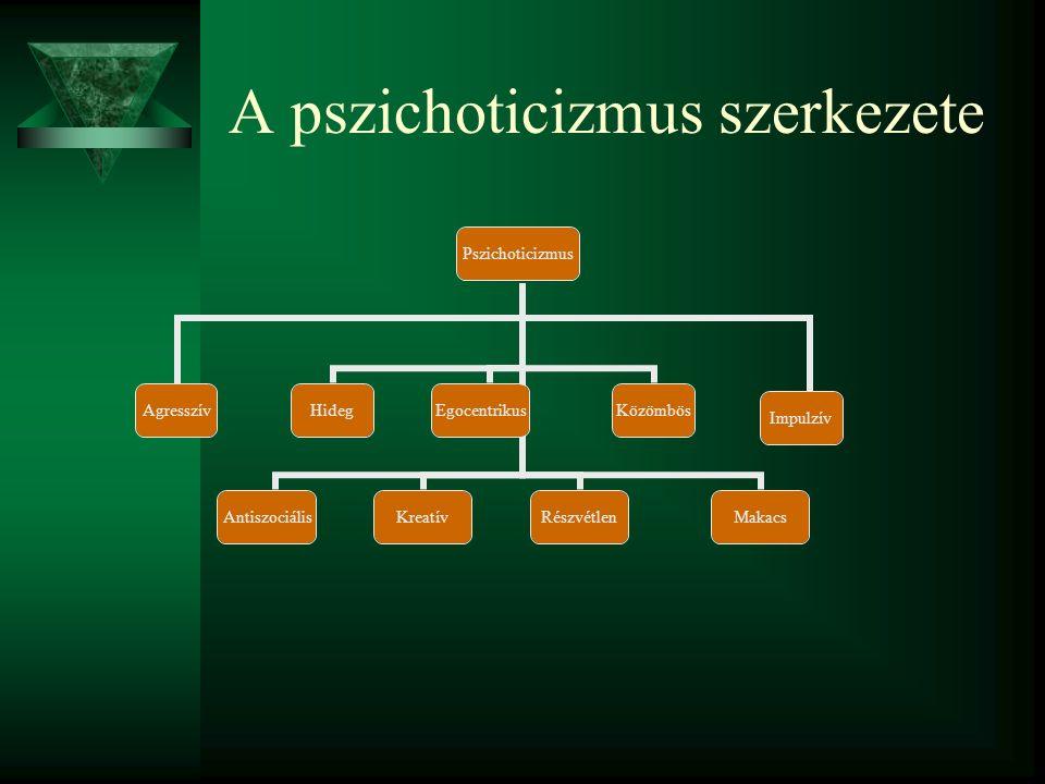 A neuroticizmus szerkezete Neuroticizmus SzorongóLehangoltBűntudatos Alacsony önértékelés FeszültIrracionálisFélénkHangulatemberEmocionális