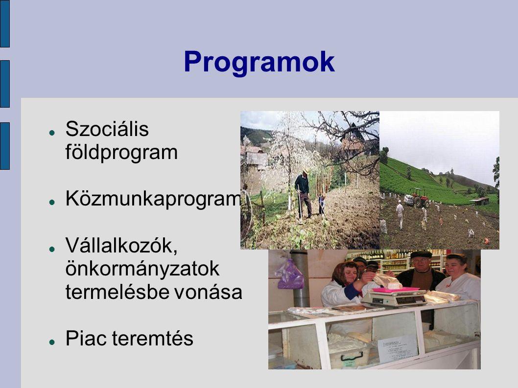 Programok Szociális földprogram Közmunkaprogram Vállalkozók, önkormányzatok termelésbe vonása Piac teremtés