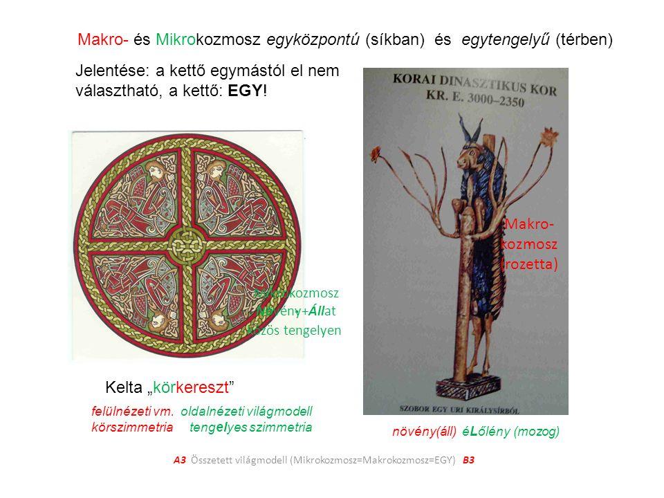 A3 Összetett világmodell (Mikrokozmosz=Makrokozmosz=EGY) B3 Makro- és Mikrokozmosz egyközpontú (síkban) és egytengelyű (térben) Jelentése: a kettő egymástól el nem választható, a kettő: EGY.