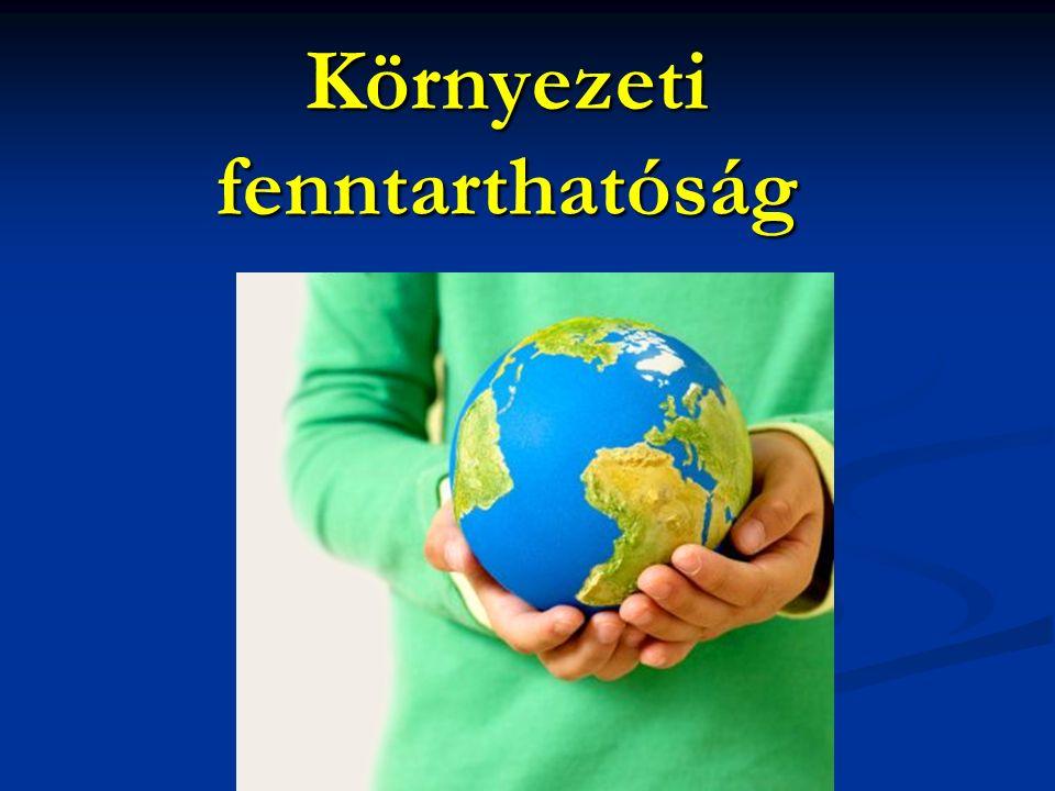 V.A helyi közösségek hosszú távon egészséges környezetének biztosítása Fenntarthatósági elvek: 9.